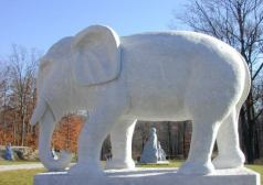 elefante1re.jpg