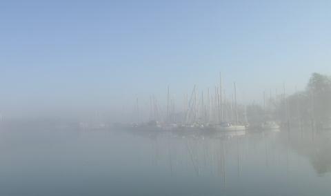 fogdayjan30.jpg