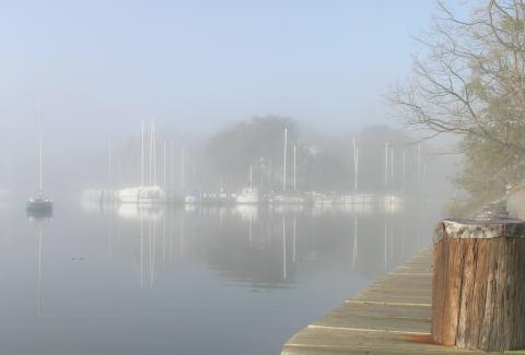 fogdayjan30_1.jpg