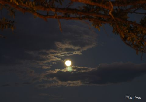fullmoon_baldwinpark_14september 059_480.jpg