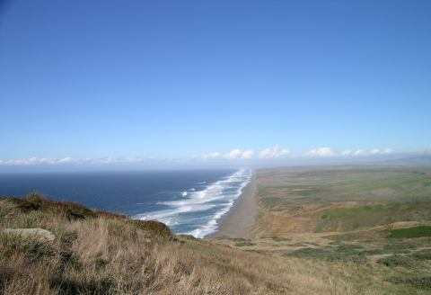pointreys_beach.jpg