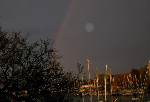 rainbownoon.jpg