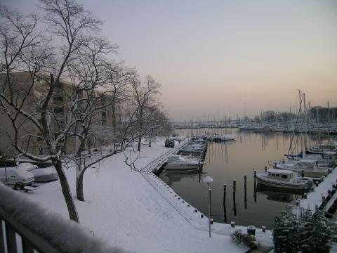 snowsunrise6december1.jpg