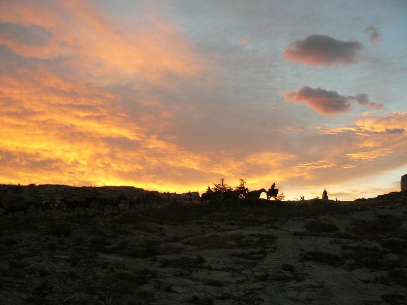 sunrisehorses_manyglacierpark_800.jpg