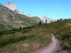 trail_hiking_iceberglake_glacierpark_240.jpg