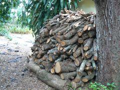 woodforfire1_240.jpg